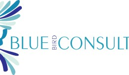 Blue Bird Consulting – Branding